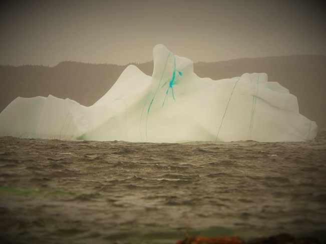 ice berg Brighton, Newfoundland and Labrador Canada