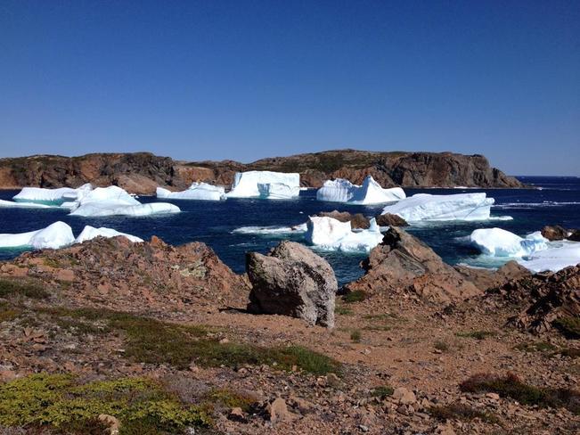 Iceberg City Twillingate, NL