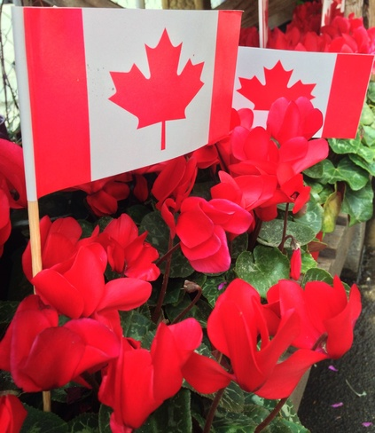Getting ready for Canada Day Vancouver, British Columbia Canada