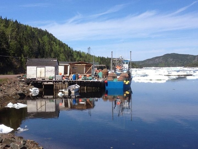 glovers harbour Leading Tickles, Newfoundland and Labrador Canada