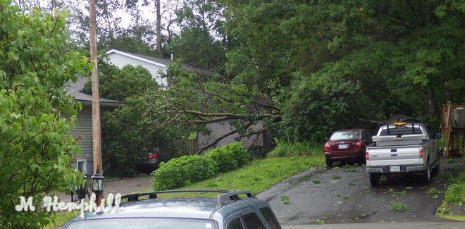 Arthur in Kentville, NS Charles Street, Kentville, NS