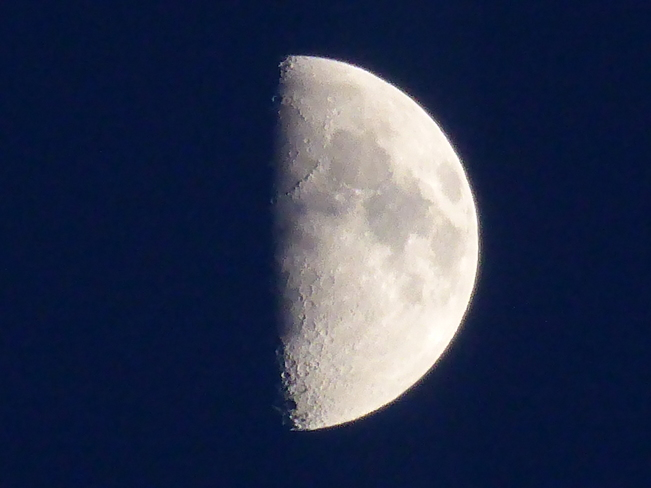 Moon Birchy Bay, NL