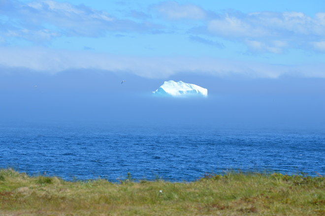 Iceberg in the sky Trinity, Newfoundland and Labrador