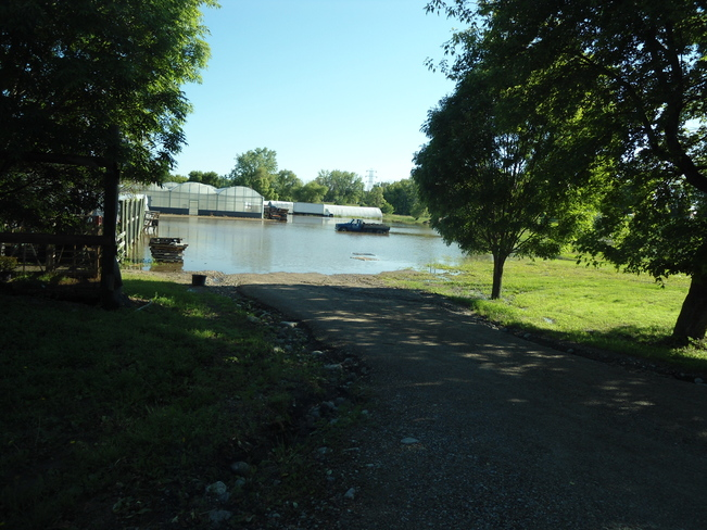 Pictures and videos from the flood zones Brandon