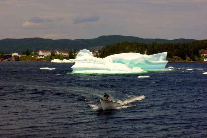 More Icebergs Corner Brook, NL