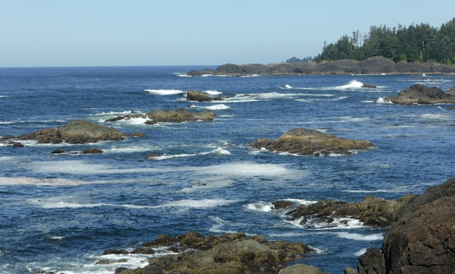 The wild west coast of Vancouver Island Ucluelet, BC