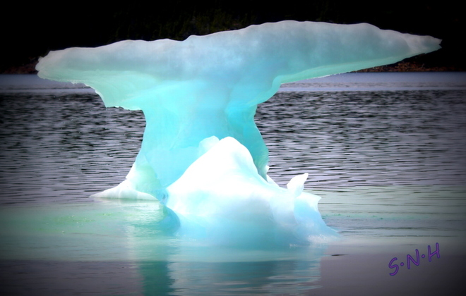 ice bergs Highway, Cottrell's Cove, NL, Canada