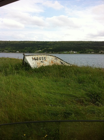 out for a drive Harbour Grace, Newfoundland and Labrador Canada