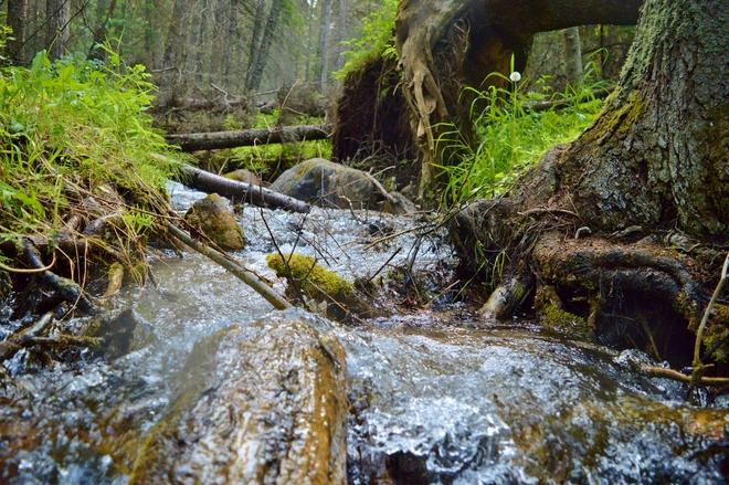 Flowing Creek Yorkton, SK
