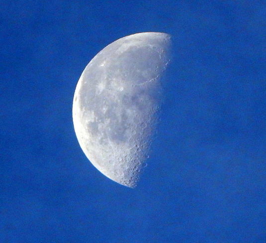 Early Morning Moon Vancouver, BC