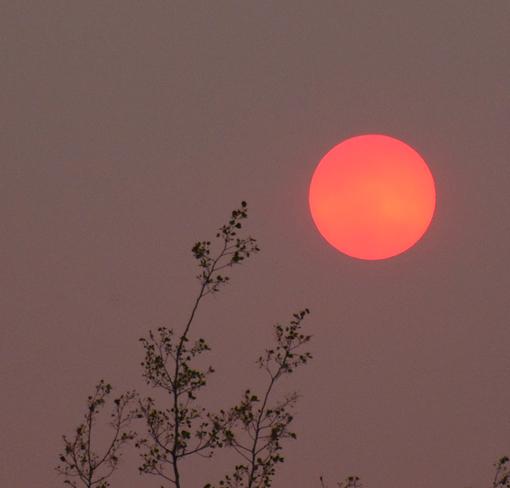 Smoke in the skies over Prince George Prince George, BC