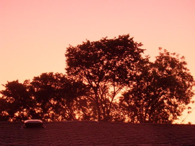 apricot sky at night Winnipeg, MB