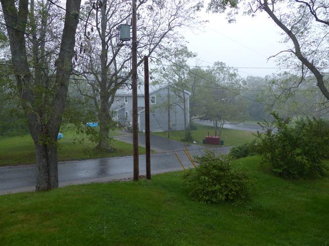 Rain Shelburne, NS