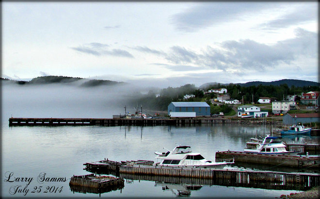 """Clearing"" Springdale, Newfoundland and Labrador Canada"