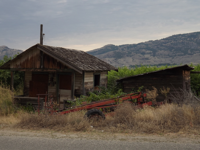 old fruit pickers shack osoyoos B.C Osoyoos, BC