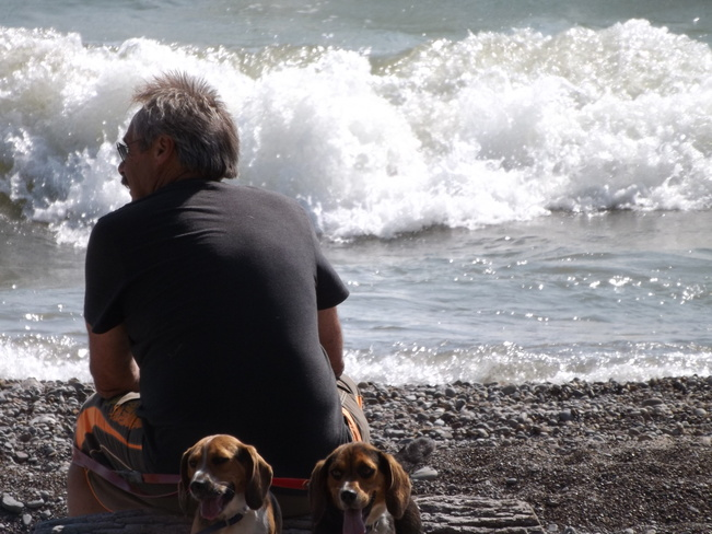 beach beagles at rockpoint Rock Point Provincial Park, Haldimand, ON
