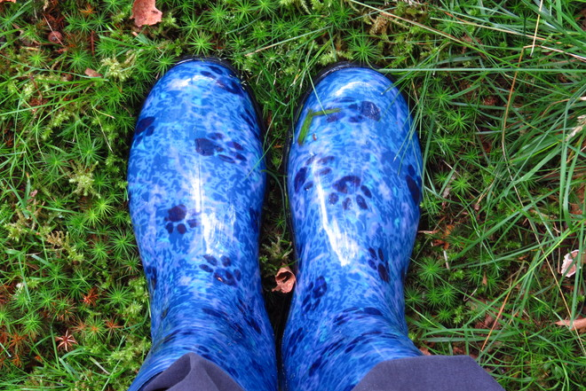 My Pawprint Rubber Boots East Chester, Nova Scotia