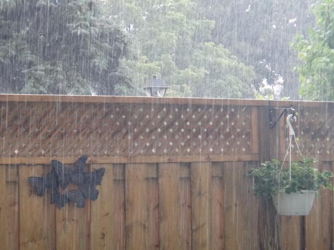 Heavy Rain. Toronto, ON