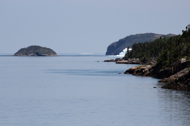 Icebergs Sweet Bay, Newfoundland and Labrador Tickle Cove, Nl