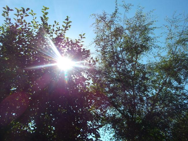 Thursday morning sunshine Saskatoon, SK