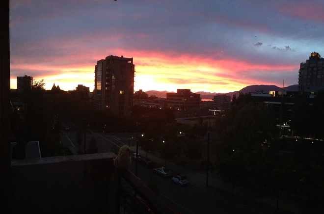 Red Sky At Night, Sailor's Delight Vancouver, BC
