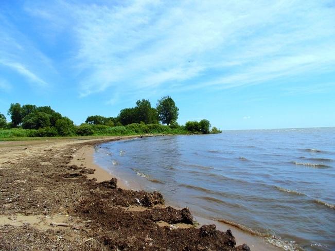 Shoreline North Ridge, Ontario Canada