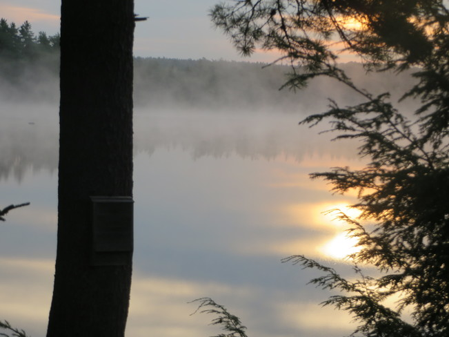 sunrise in July on Sixth Lake, Bear River, NS