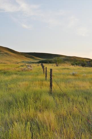 Saskatchewan Landing Provincial Park Rosthern, SK