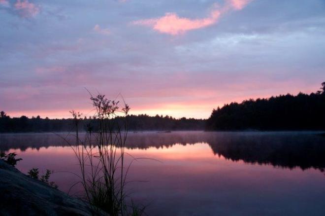 Pastel dawn Erin, ON