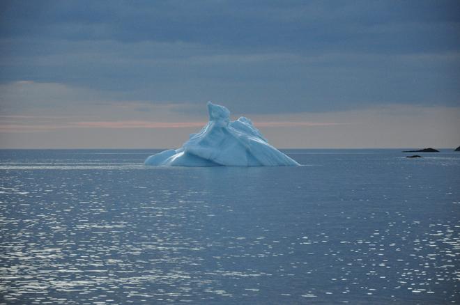 Iceberg Twillingate, NL