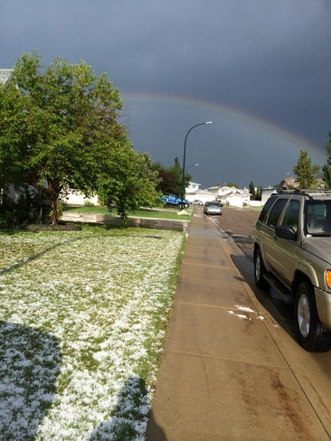 It's summer...after the storm.. Red Deer, Alberta Canada