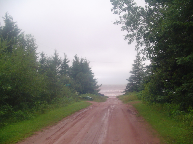 road leading to beach O'Leary, Prince Edward Island Canada