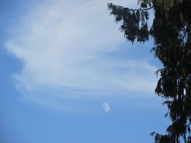 day moon Surrey, BC
