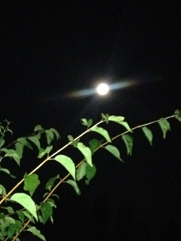 Innisfail big moon Innisfail, AB