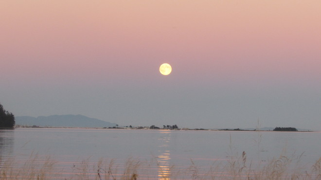 Super Harvest Moon over the Bay Courtenay, BC