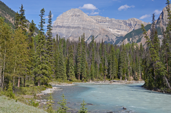 emerald river Yoho National Park, Field, BC