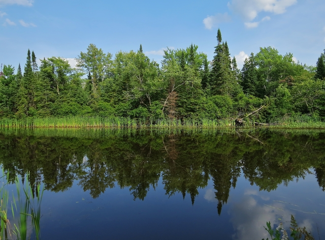 Reflections on a magnificent Monday. 7 Champlain Park Road, North Bay, ON P1A 1S2, Canada
