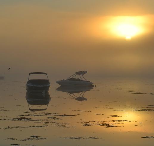 East Coast Sunrise PEI