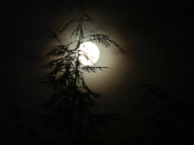various moon shots Surrey, BC