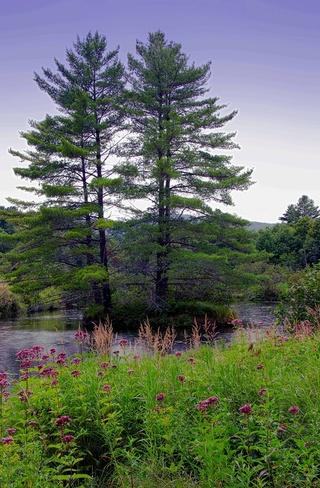 Orford Landscape Orford, Quebec Canada