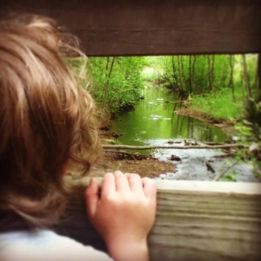 Dorrs Pond