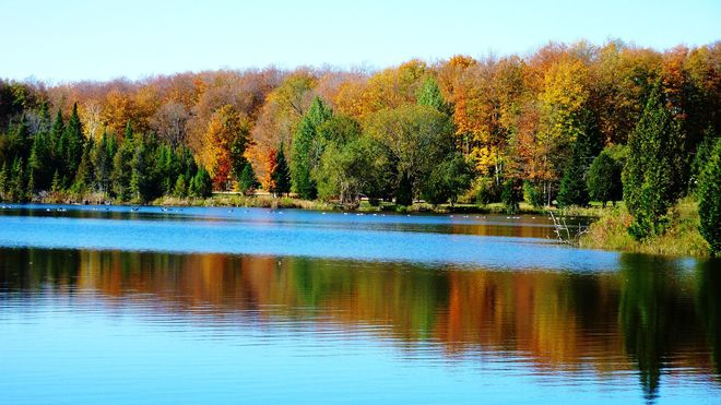 Fall beauty Bruce County, ON
