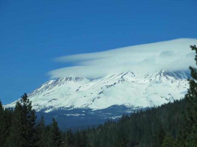 Rare view of Mount Shasta Sooke, BC