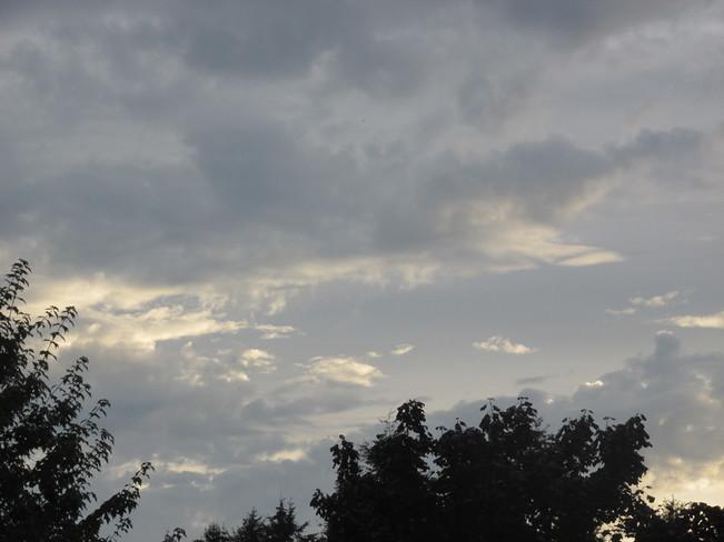 sky designs Surrey, BC
