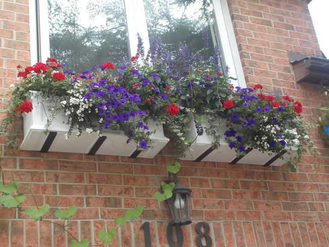 Window boxes full of summer flowers North York, Toronto, ON
