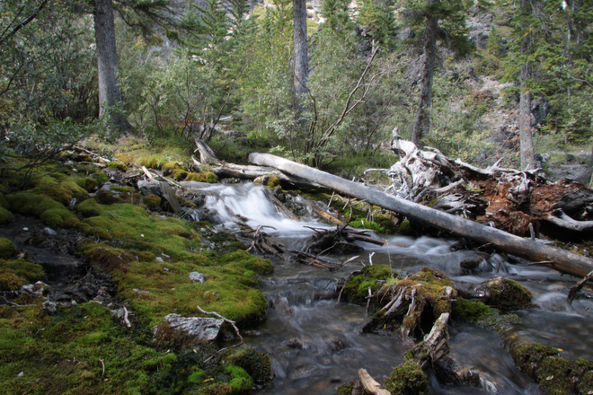 River creeks Grassi Lakes, Canmore, AB
