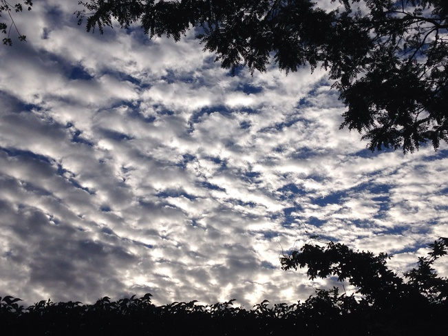 Beautiful Clouds High Park North, Ontario Canada