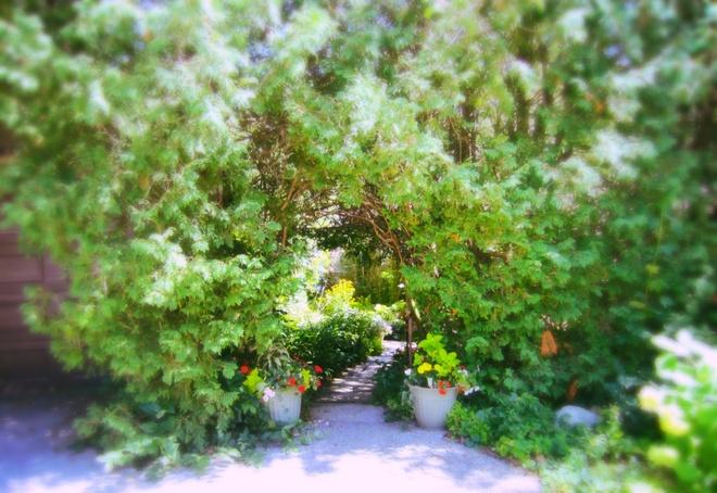 Secret Garden #2 Orillia on