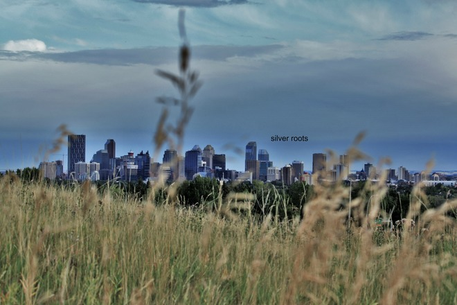 So much to see from Nose Hill Park calgary ab.
