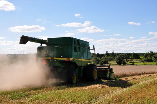Farming Acton, ON
